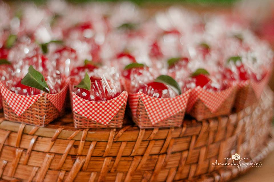 festa picnic 10