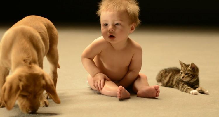 a_vida_secreta_dos_bebes