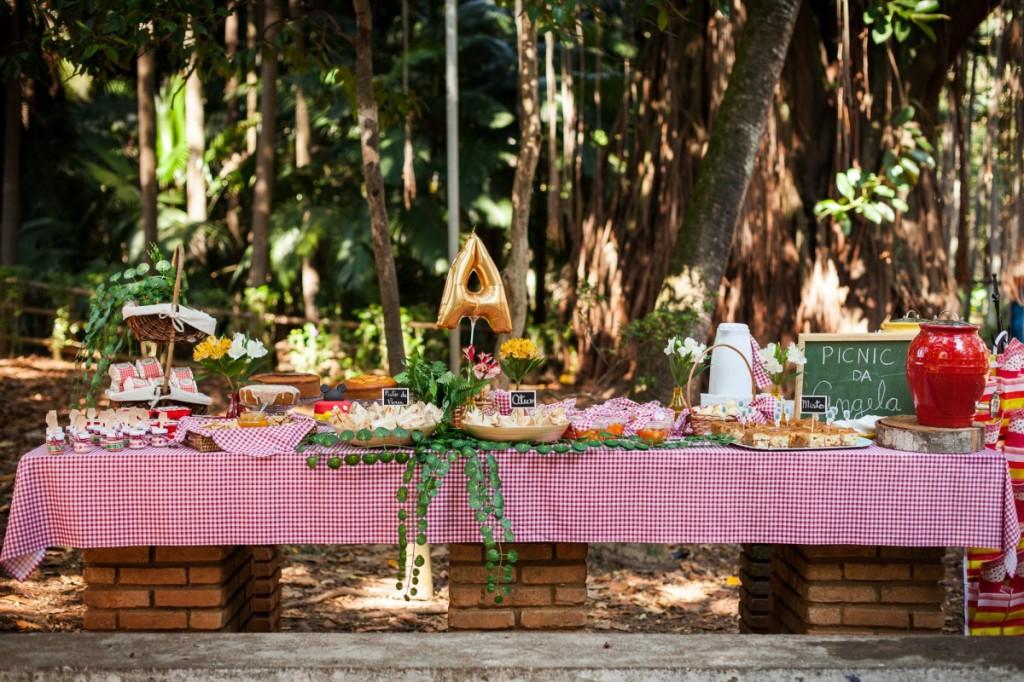 festa-aniversario-picnic