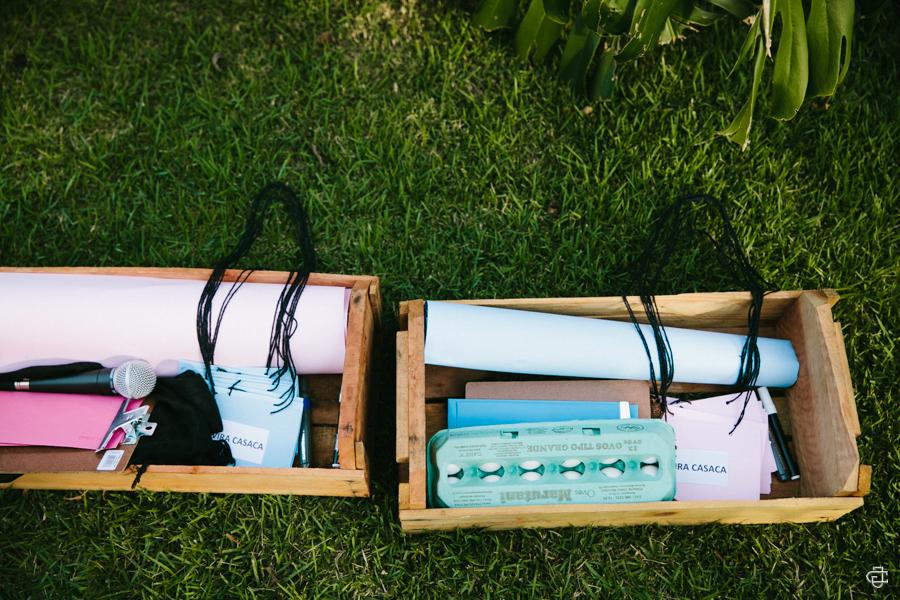 cha-revelacao-picnic-pra-se-inspirar11